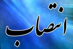 «حجت الاسلام سید شاکر موسوی» به عنوان رئیس جدید دادگستری شهرستان بیله سوار انتخاب شد