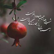 """انیمیشن""""شب یلدا با هم مهربان باشیم""""+دانلود"""