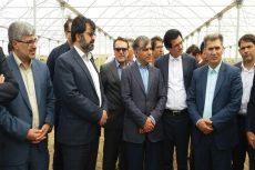 بزرگترین شهرک گلخانه ای کشور در پارس آباد مغان ایجاد می شود