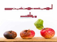 هم نشینی و رفاقت / آیت الله حق شناس تهرانی