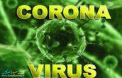 روبوسی و دست دادن مهترین علل سرایت بیماری ویروس کرونا است